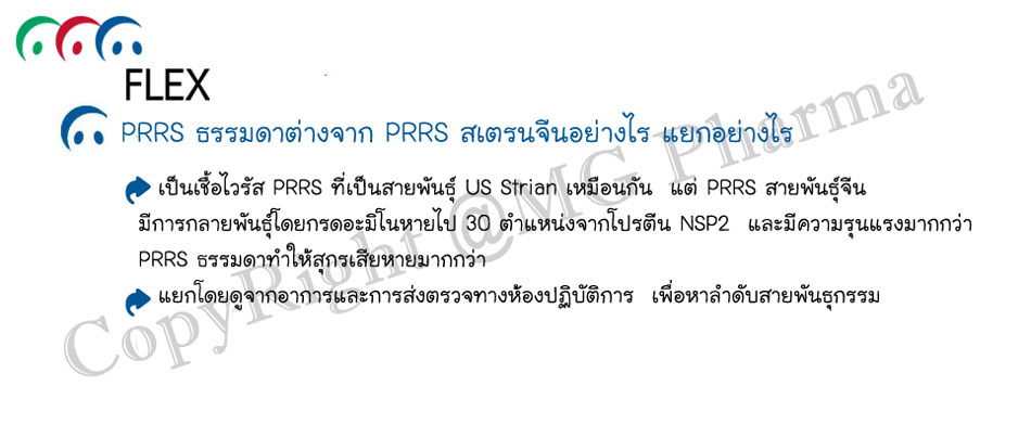 2.PRRS