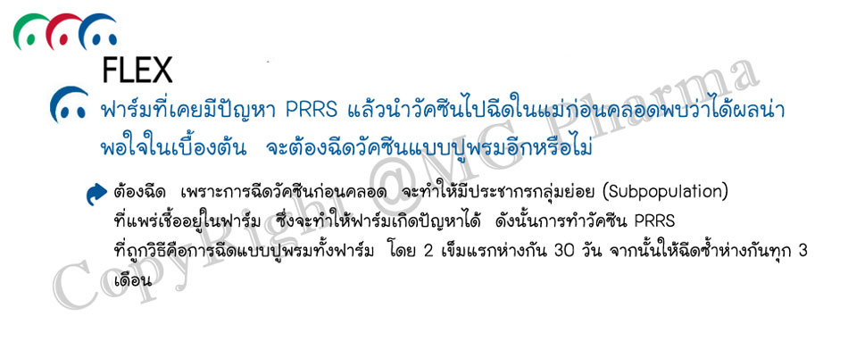 9.PRRS